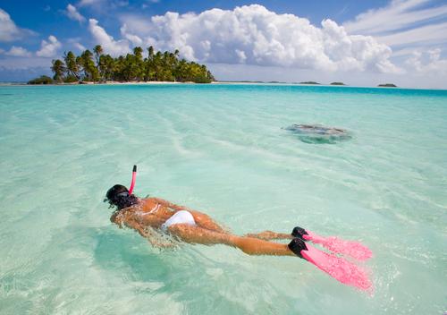 Political Satirists Return From Month-Long Tahitian Retreat